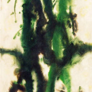 35Family, Nature Series, watercolor, 70 x 50 cm, not signed, undated (ca. 1969)